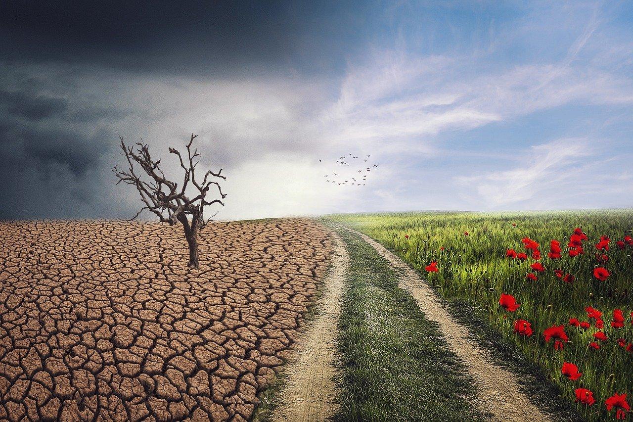 Cuáles son los Factores que Inciden la Resistencia al Cambio